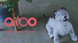 """ロボット犬""""aibo""""(アイボ)が2018年1月11日に発売予定!!"""